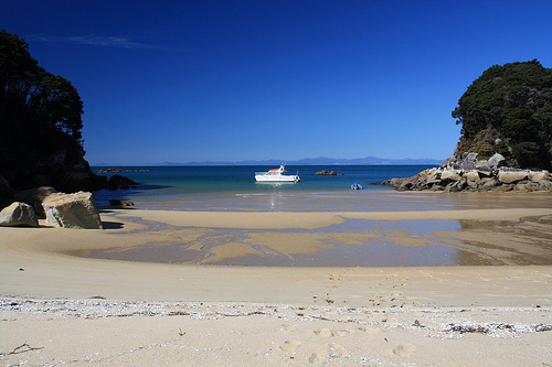 Abel Tasman Charter on a beautiful sunny day 2