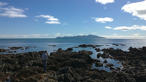 Looking out to Kapiti Island