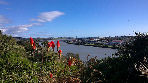 Whanganui Town across the river