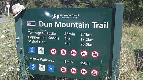 Dun Mountain Trail Mitai Valley