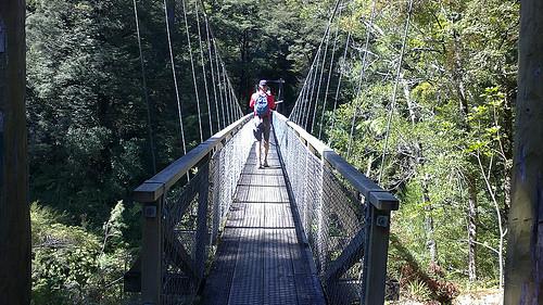 Pelorus suspension bridge Michael