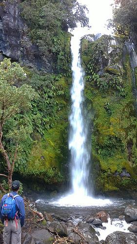 Dawson Falls for blog