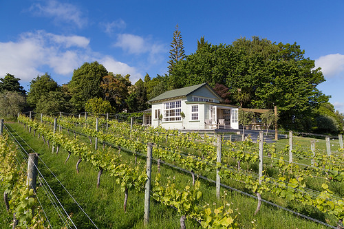 Kina Beach Cottage Vineyard - another of the top 10 new zealand honeymoon destinations