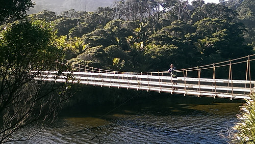 Heaphy Track Swing Bridge2