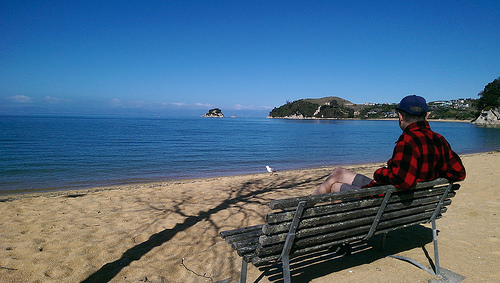 Abel Tasman Coastal Walks seating
