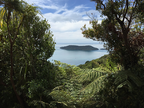Queen Charlotte Sound day walk Marlborough