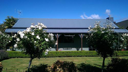 Koa Tui Cottage Te Anau
