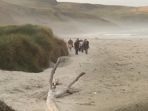 Papanui Beach group