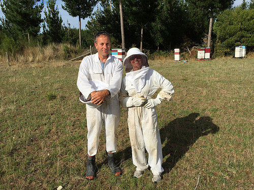 Bee-keeping Ken and Pam