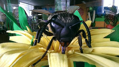 Arataki Bee