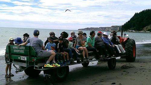 Gannet Beach Adventures2