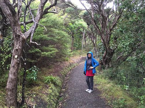 Kapiti Island Pam on track