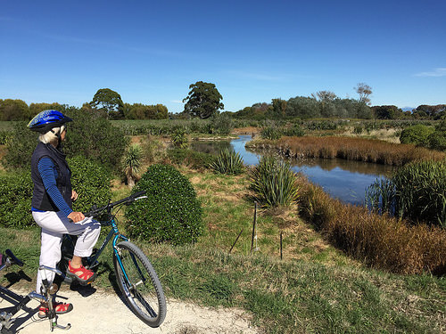Hawkes Bay Cycle Trail