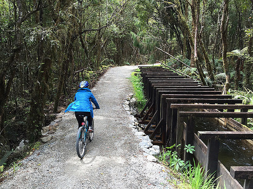 Lake Kaniere Cycle Trail Pam2