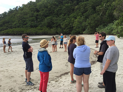 Daintree Rainforest Tours from Port Douglas