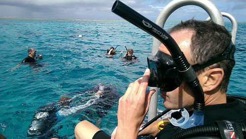 Great Barrier Reef Snorkeling Tours