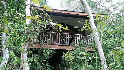 Thala Beach Chalet with lots of privacy for honeymoon travellers