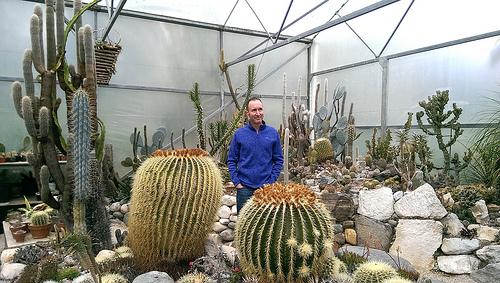 Riverside Cafe Cactus