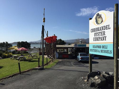 Coromandel Mussel shop