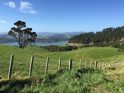 Coromandel hills