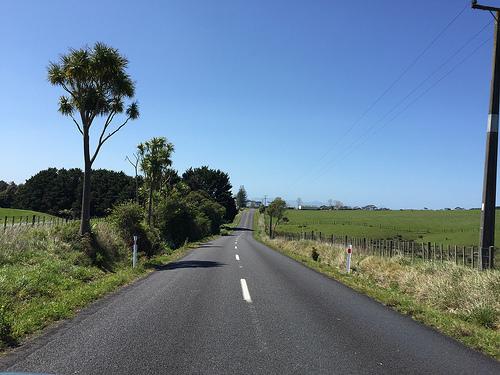 Coromandel roads