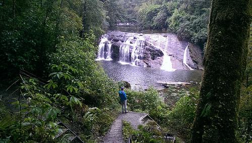 West Coast Waterfall2