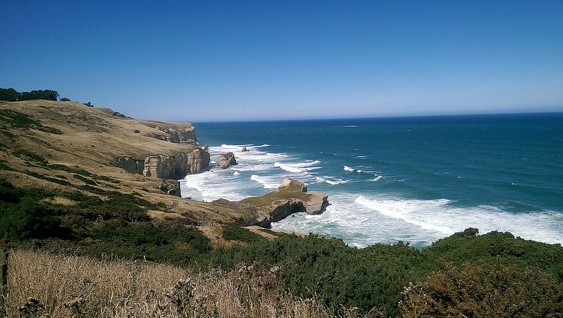Dunedin Tunnel Beach Walking Track - coastal track