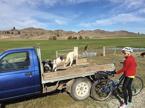 Central Otago cycle trail