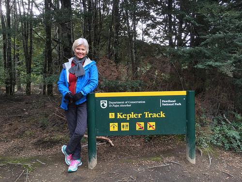 Kepler Track Pam small