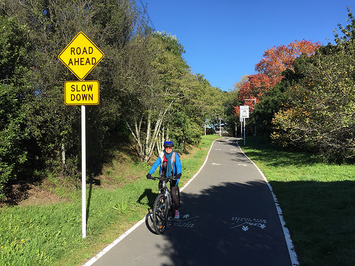 Electric assist bicycles (e-Bikes) New Zealand cycle trails