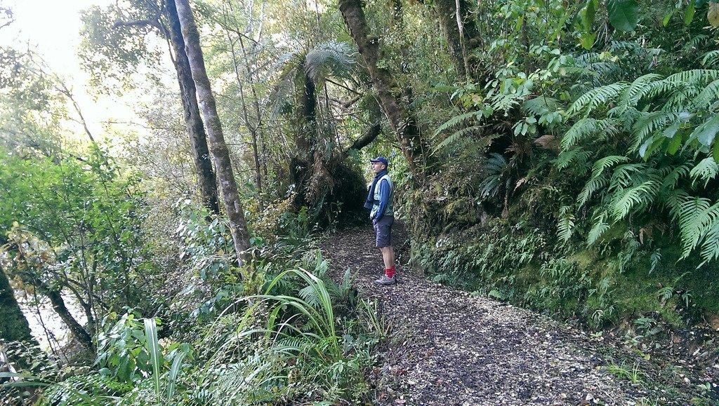 Karamea and Oparara Arch Track