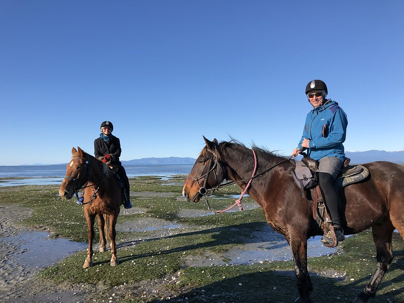 Cape Farewell Horse Trekking Tour in the Golden Bay