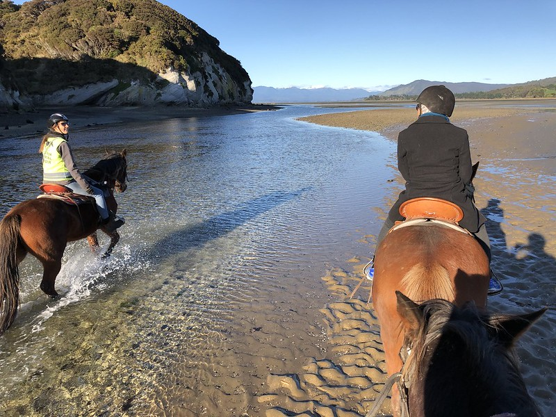Cape Farewell Horse Trek Tour on the Golden Bay beach
