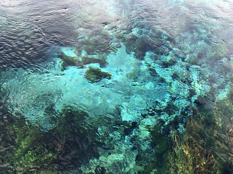 Magic clear walk at Pupu Springs Bolden Bay