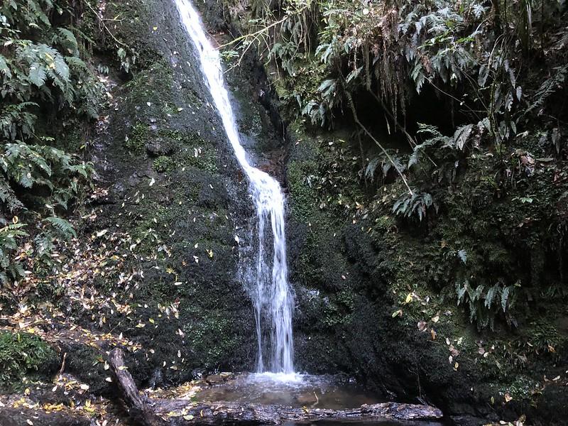 peel forest waterfall near geraldine